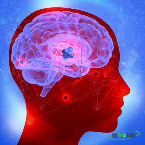 Brain Health Supplement Manufacturing