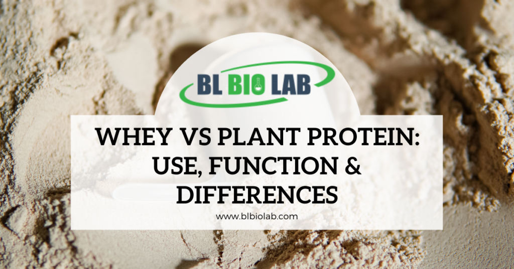 Whey vs Plant Protein: Use, Function & Differences