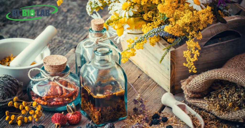 Best Liquid Vitamin Manufacturer Practices